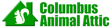Columbus Animal Attic